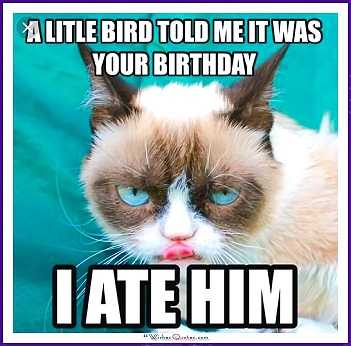 Birdy Birthday.jpg